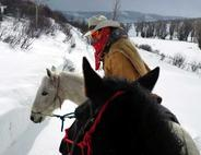 Riding the Pow in Steamboat on Horseback and Skis