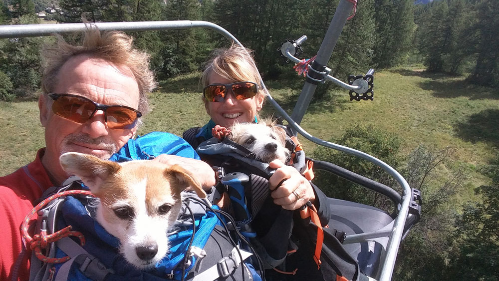 Dogs Chair-lift