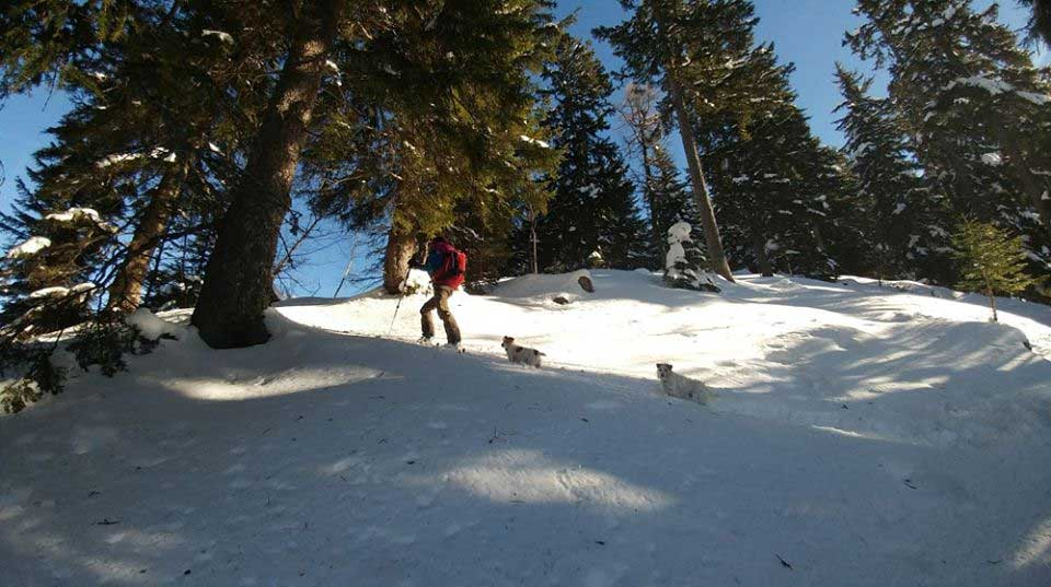 Ski touring in Chamonix