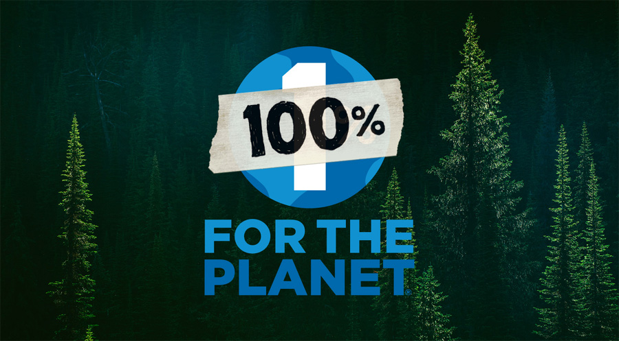 Black Friday will be Green Friday for Patagonia